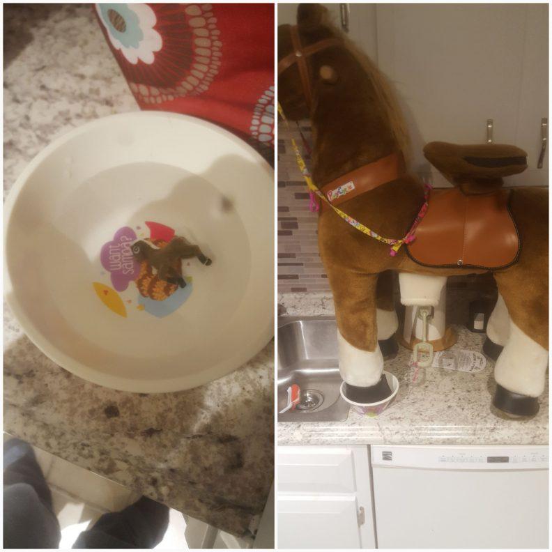 Un poney qui grandit quand il est dans l'eau