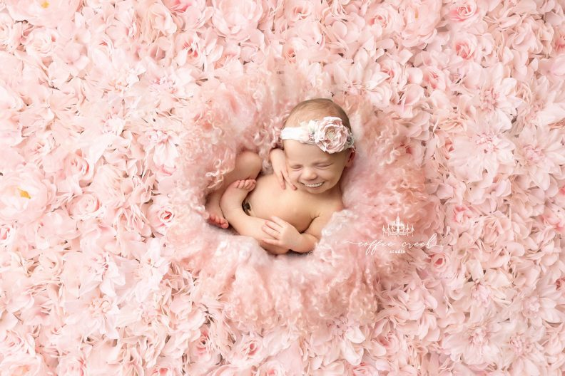 Album If babies had teeth! d'Amy Haehl : photo 15