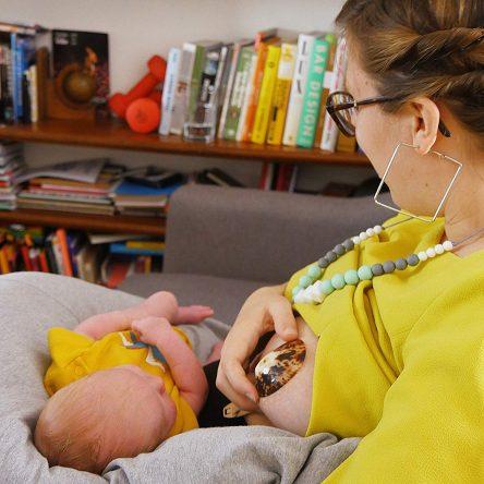 Coquillage d'allaitement : comment ces coquillages favorisent l'allaitement