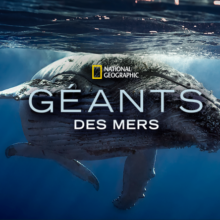 Disney Plus : Géants des mers par le National Geographic