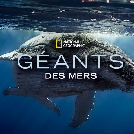 Disney Plus : Géants des mers par le National Geographic