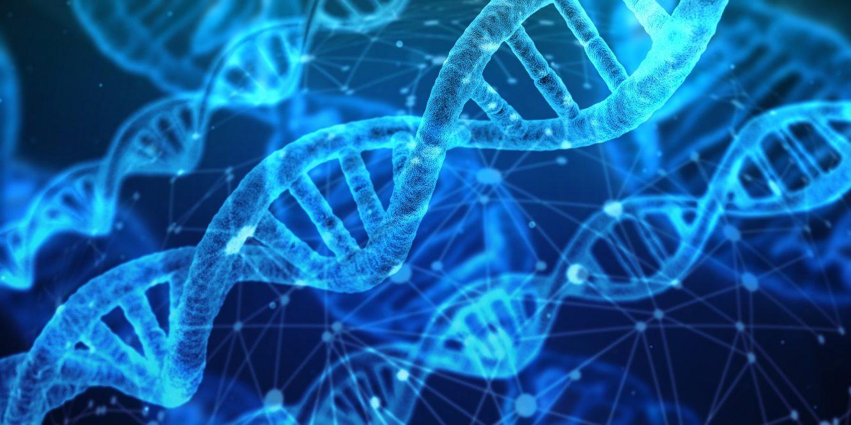 Révolution médicale : un bébé miracle naît avec l'ADN de 3 personnes